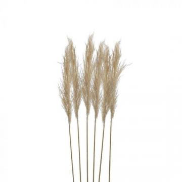 Inart Κλαδί/Φυτό Μπεζ ύψος 70cm 3-85-909-0002